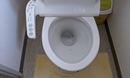 焼津市トイレの詰まり直しはお任せください!