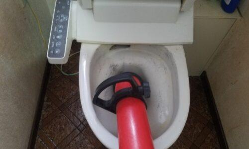 掛川市トイレつまり直しはお任せください!