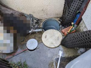 雑排水マス、排管、高圧洗浄